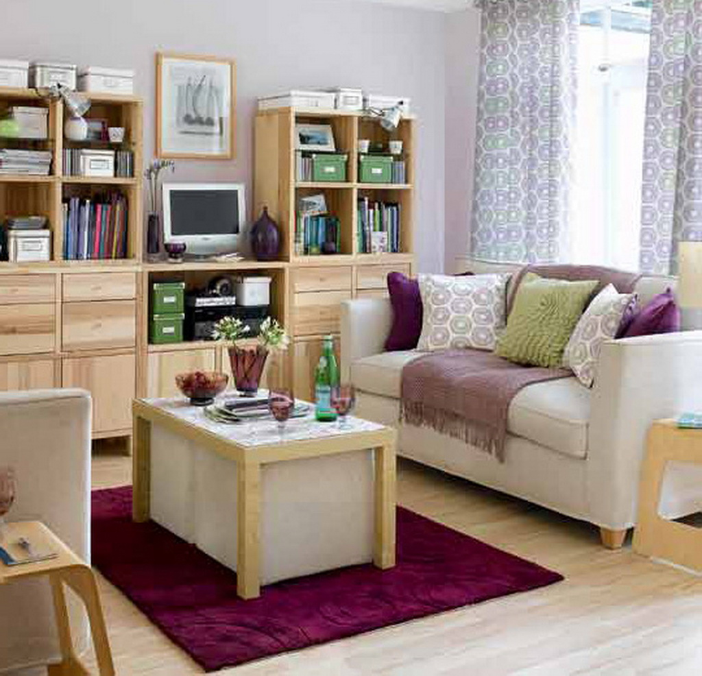 beauteous-decorating-small-living-room-ideas
