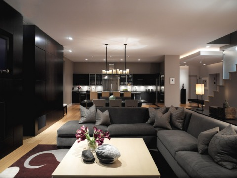 contemporary-living-room-decorating-ideas-1