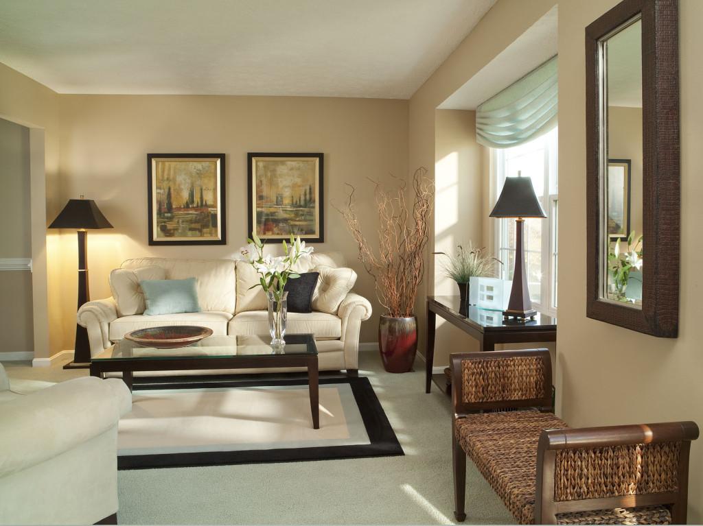 transitional-living-room-designs-