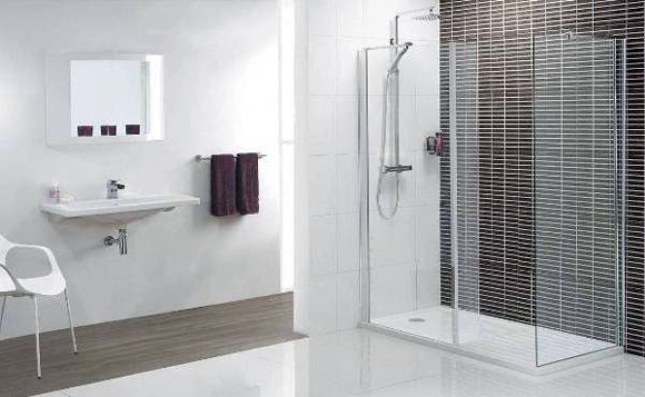 Bathroom Walk In Showers Design Ideas