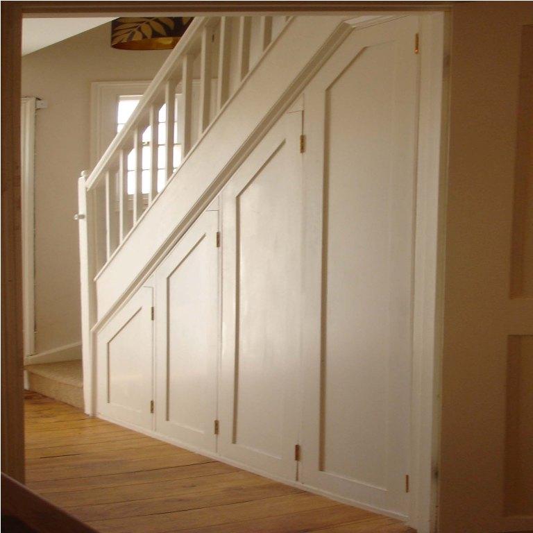 Home Gym Design Ideas Basement: 21 Under Stairs Cupboard Design Ideas