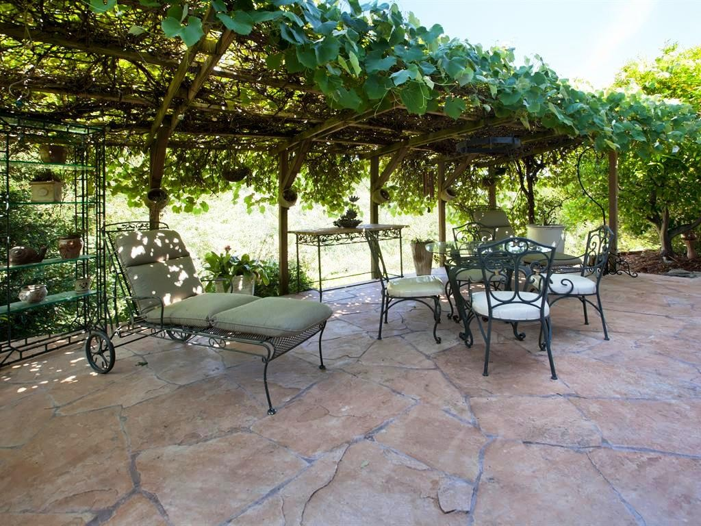 Grape-Arbor-Patio_