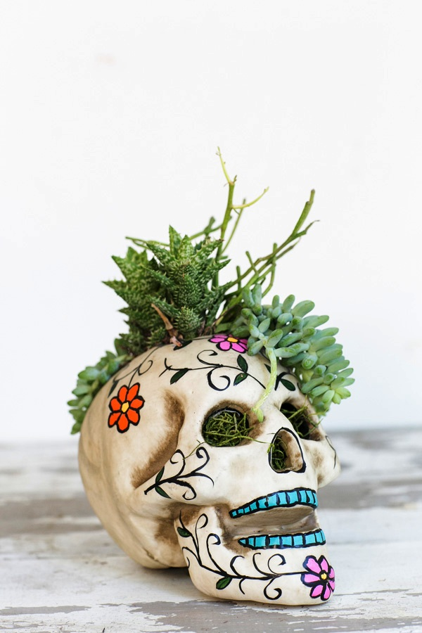 HalloweenSkullPlanter-