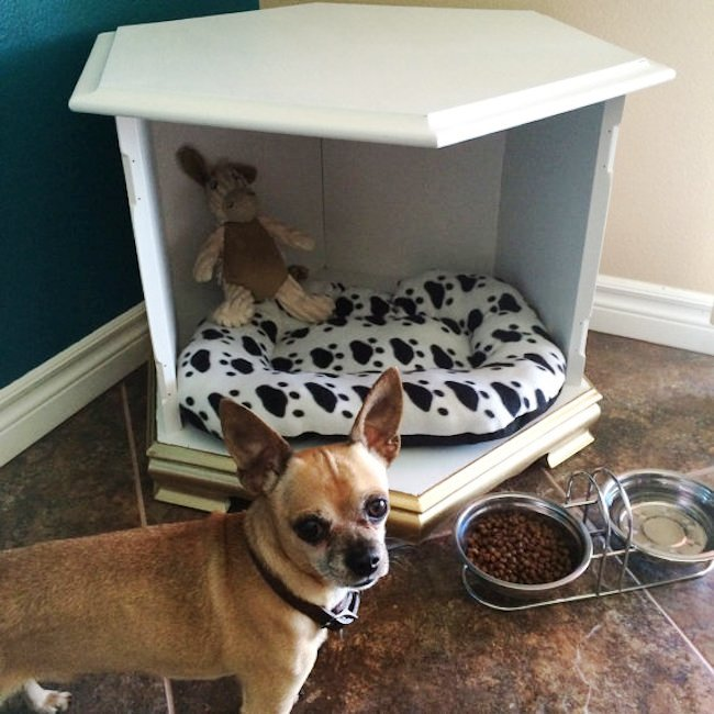 Simple-dog-bed-that-could-be-used-as-a-table-too