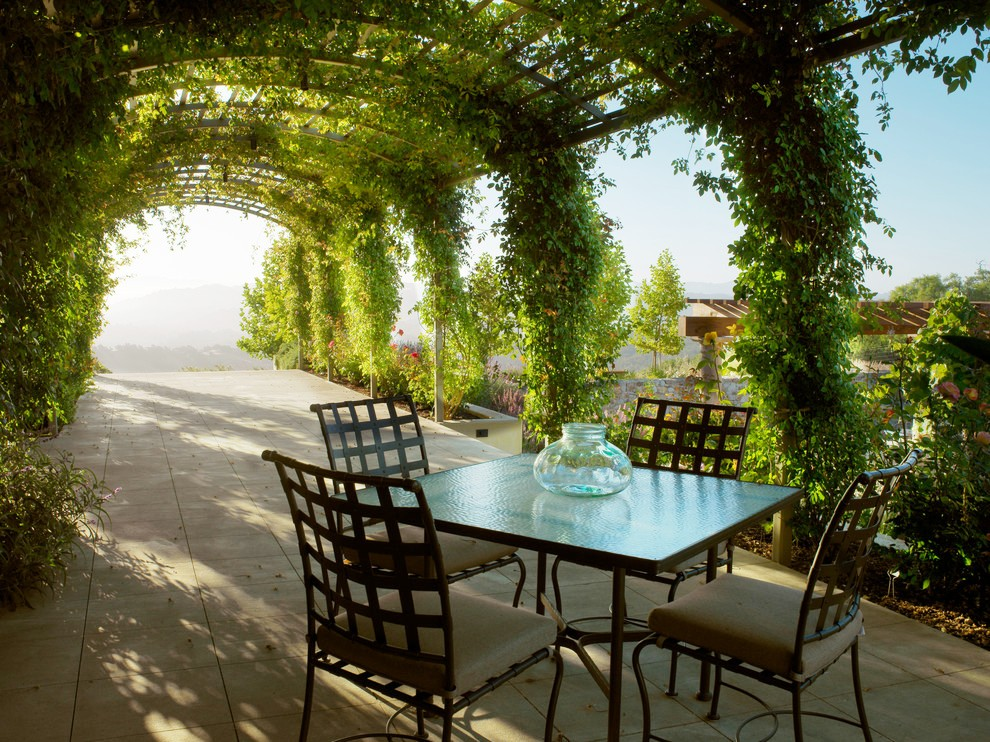 Sumptuous Grape Arbor Ideas