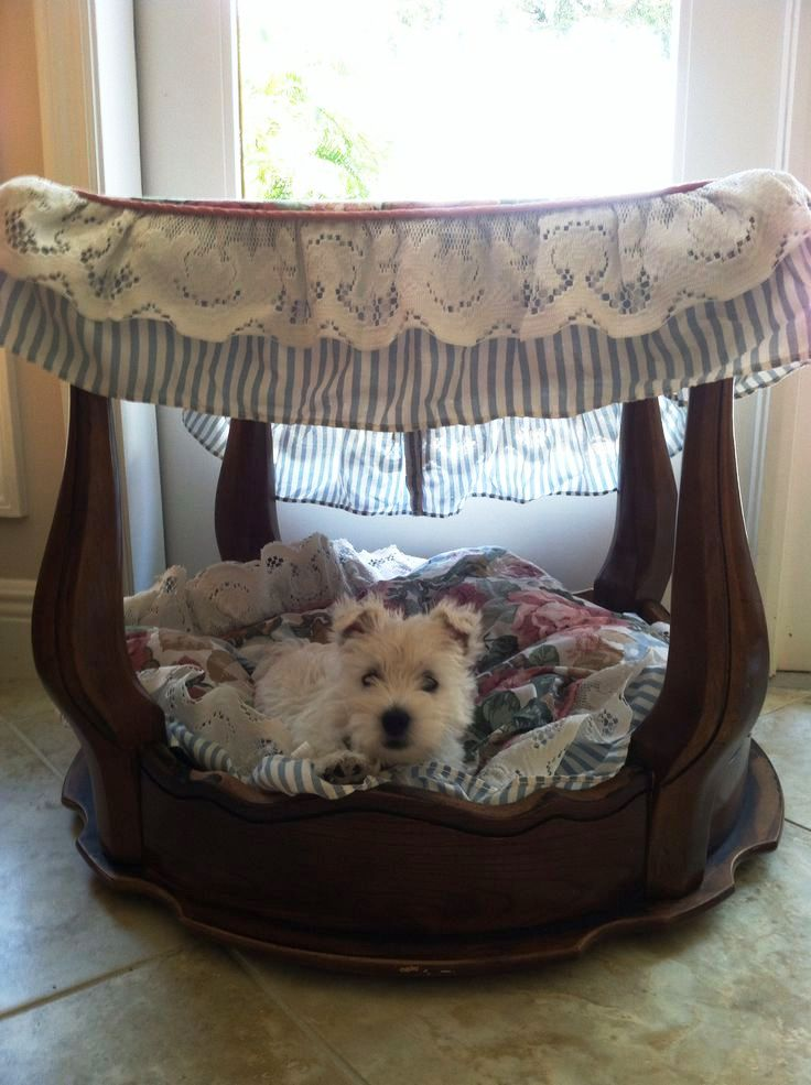 canopy pet bed ideas