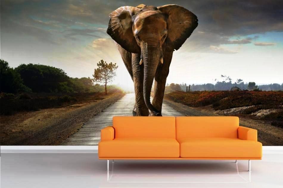 elephant-mural-allpaper-room-wallpaper-murals-animals