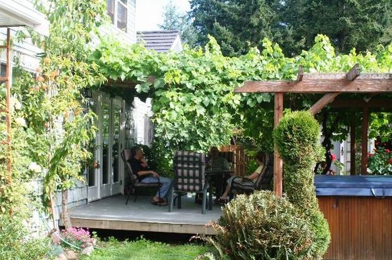 grape-arbor-design-ideas