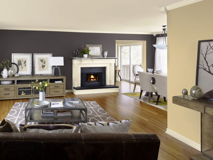 ideas-for-paint-colors-in-living-room-modern-house-decoratin-ideas-