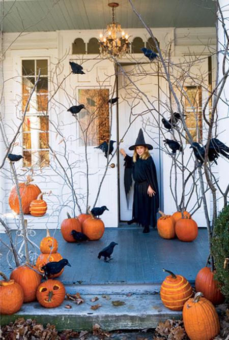 Creepy Branches & Fake Crow Decoration