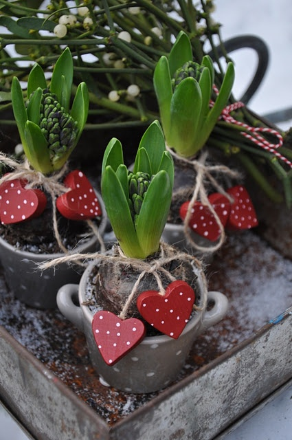 fresh-red-valentines-day-decoration-ideas-23