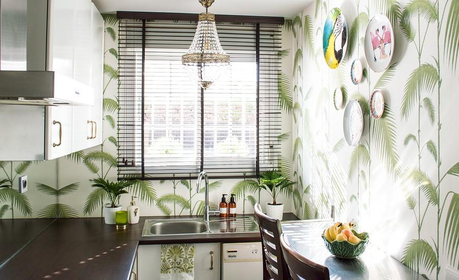 Small Tropical Kitchen Design