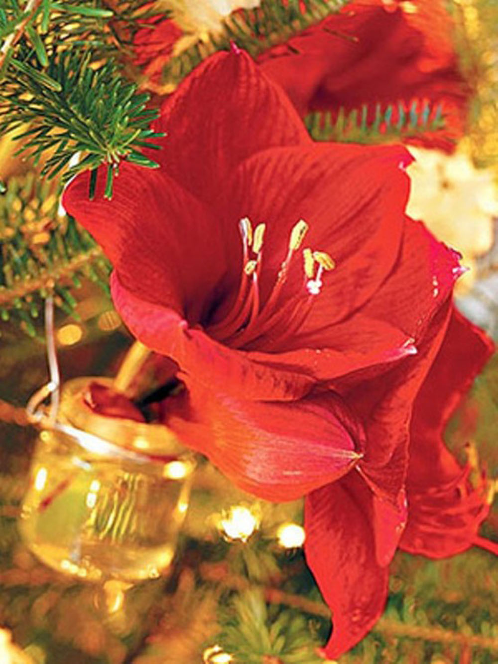 Christmas Ornament Bud Vases