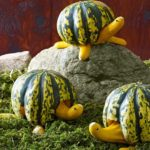 40 Creative Halloween Pumpkin Carving Ideas