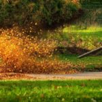 Which Type of Leaf Blower is Perfect for Clearing Debris from Your Lawn?