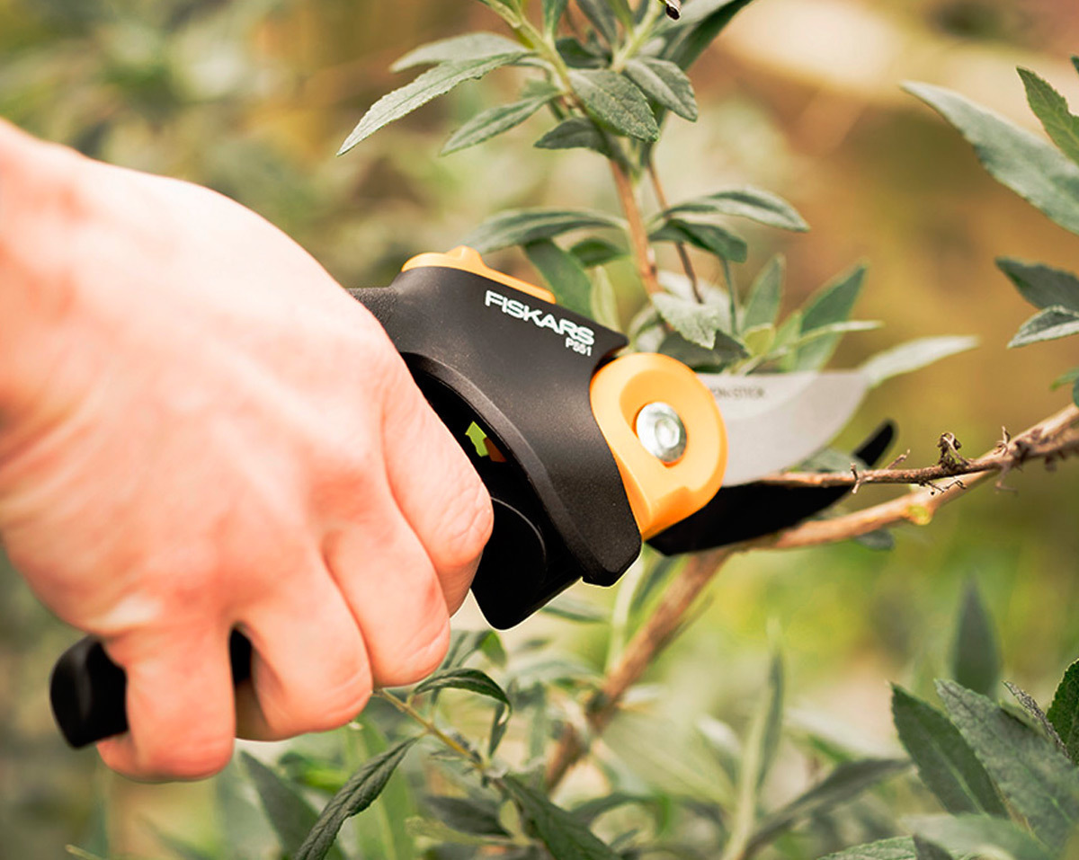 Pruners, Tree Trimmers and Sheers