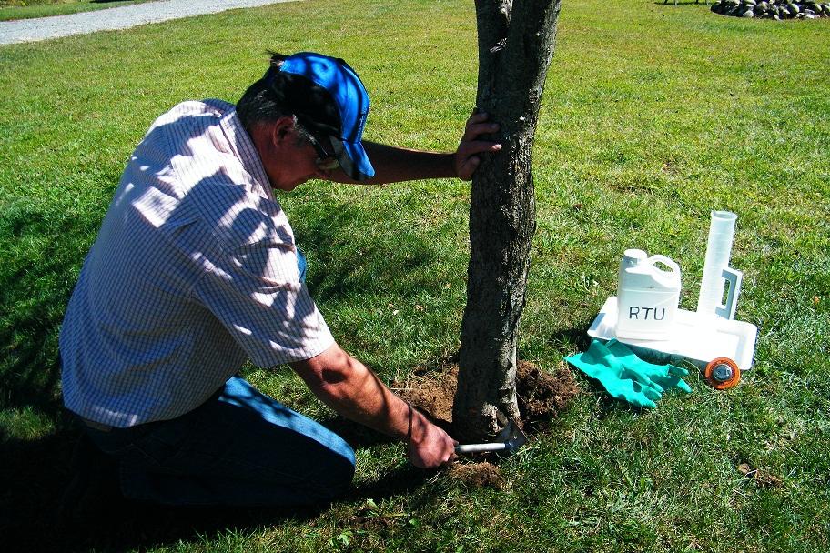 Tree Growth Regulators (TGR)