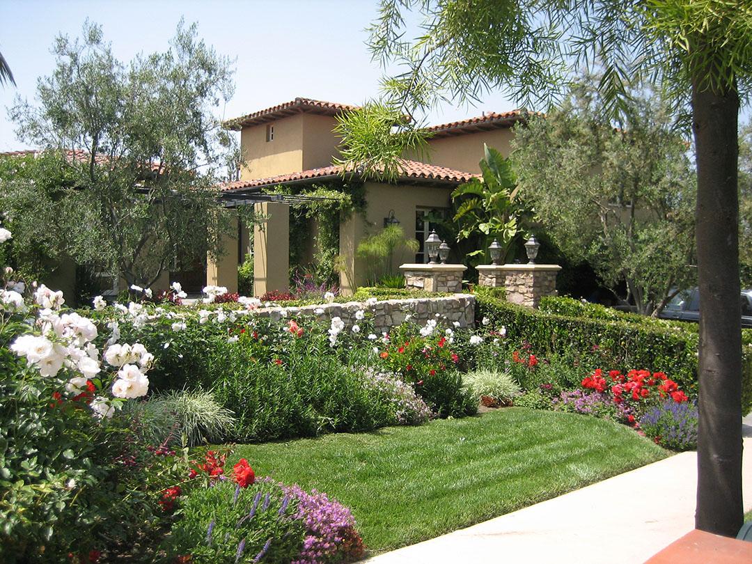 Choose an optimal planting location