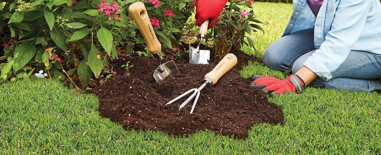 Other Reasons You May Need To Remove The Soil