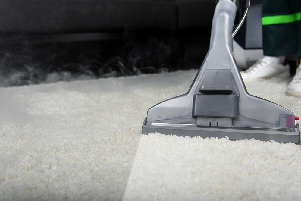 Proper Carpet Cleaning