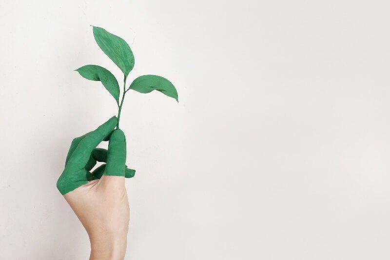Go Eco-Friendly