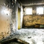 Mold Problems and Your Health
