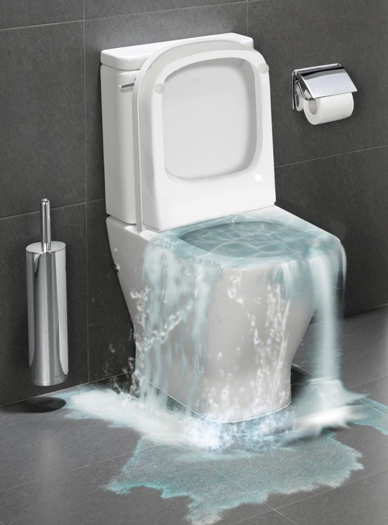 Toilet Overflowing