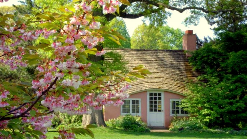 Landscaping Increases Resale Value