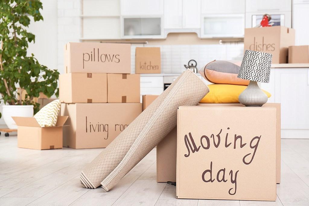 Make a Moving Day Box