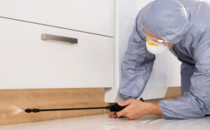Reasons to Hire an Exterminator
