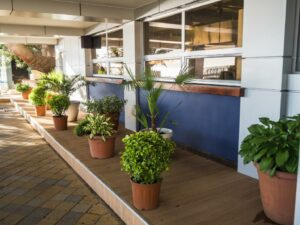 Using Planters to Enhance Commercial Spaces