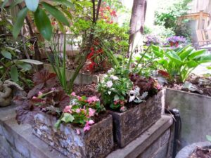 How to Choose a Garden Irrigation System