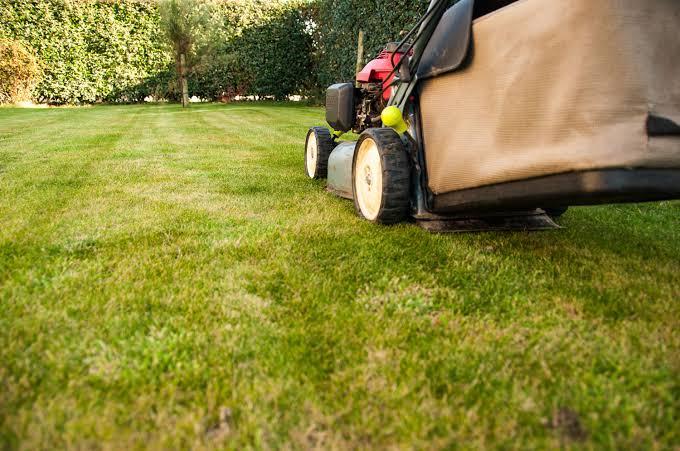 Lawn Care Insurance