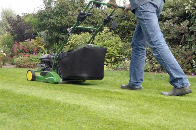 Mow the Lawn2