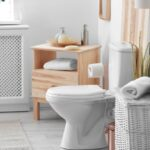 Choosing the Best Toilet for Your Bathroom