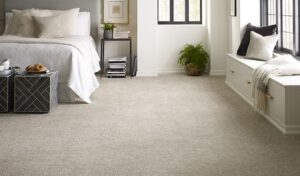 Tips on Extending the Life of Your Carpet