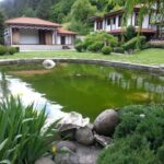 6 Inspiring Ideas for a Beautiful Backyard