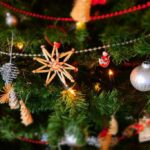 5 Ways to Decorate Your Front Lawn This Christmas
