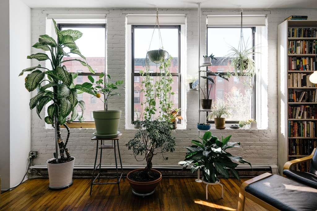 Preserve Good Indoor Air Quality