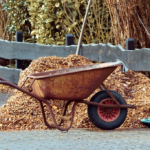 Need to Hire a Landscaper? 5 Things to Know Before You Hire