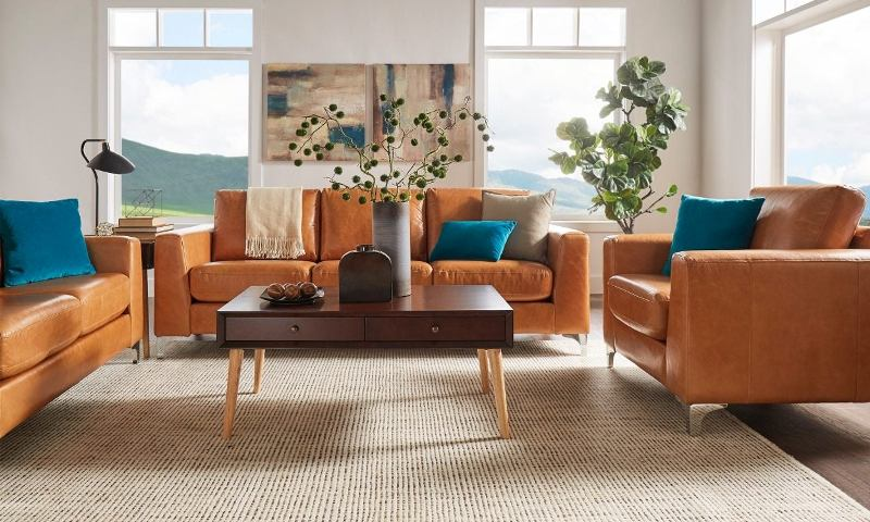 The Cost of the Leather Sofa Set