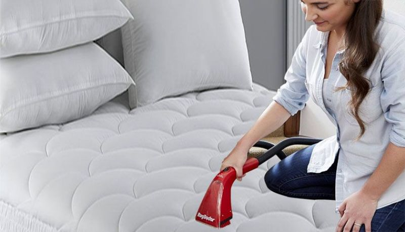 Best Vacuum For Bed Bugs – Homegear Guider