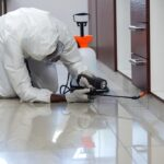5 Tips to Find the Top Pest Control Services in Your Area