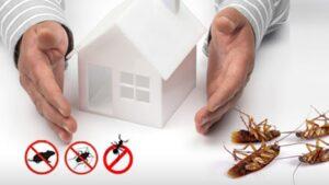 Hiring Pest Control Services