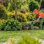 5 Benefits of Using Professional Garden Maintenance Services