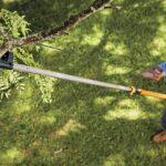 How to Use a Manual Pole Saw