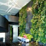 Benefits of a Garden in an Office