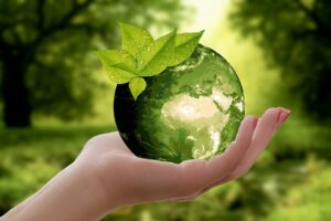 Here Are 11 Easy Ways to Become More Sustainable