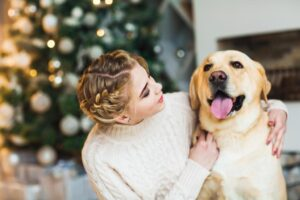 Important Home Maintenance for Pet Owners
