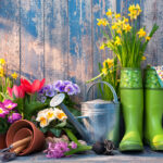 7 Simple Steps To Start Your Garden And How To Ensure It Thrives